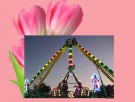 На фестивалі «Волинська Голландія» будуть працювати атракціони