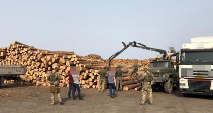 На деревообробному підприємстві в Ковельському районі проводять обшуки.