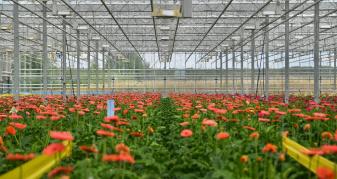 За пів року підприємство реалізувало продукції на 18 мільйонів гривень