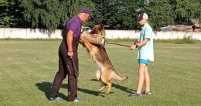 У Шацьку кінологи влаштували іспитові змагання для службових собак