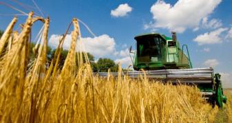 Молотіння зернових