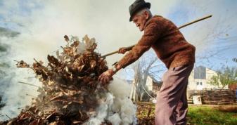 Закон забороняє випалювати суху рослинність