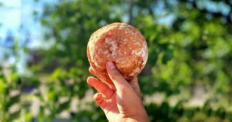 Світязький пончик