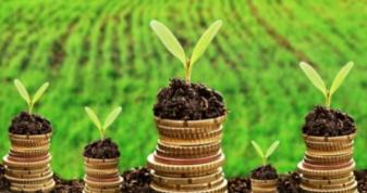 На Ратнівщині сплатили понад п'ять мільйонів гривень плати за землю