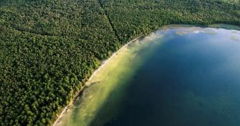 На Рівненщині проведуть інвентаризацію водних і лісових ресурсів