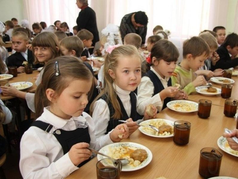 Камінь-Каширська РДА замовила у фірми «Атомсервісу» послуги харчування дітей на 40,10 мільйона гривень