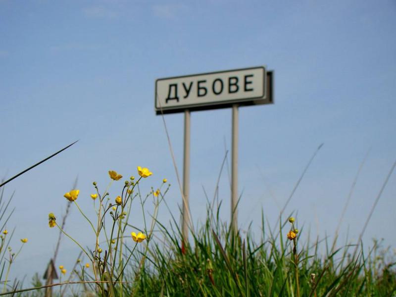 У Дубівській ОТГ розробляють стратегію розвитку громади. ВІДЕО