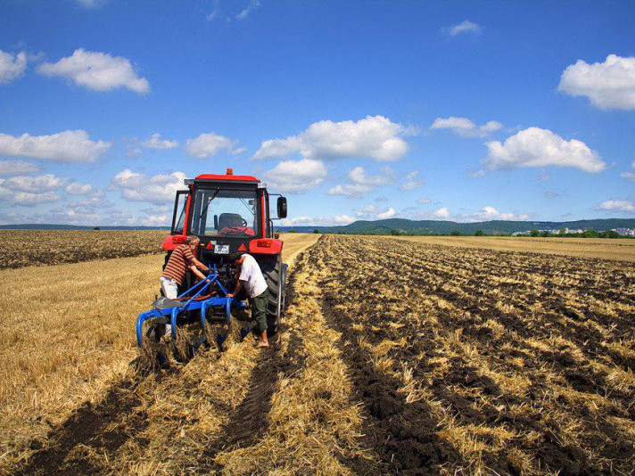 Фермера в Люблинецькій ОТГ змусили звільнити самовільно зайняту землю / Фото ілюстративне