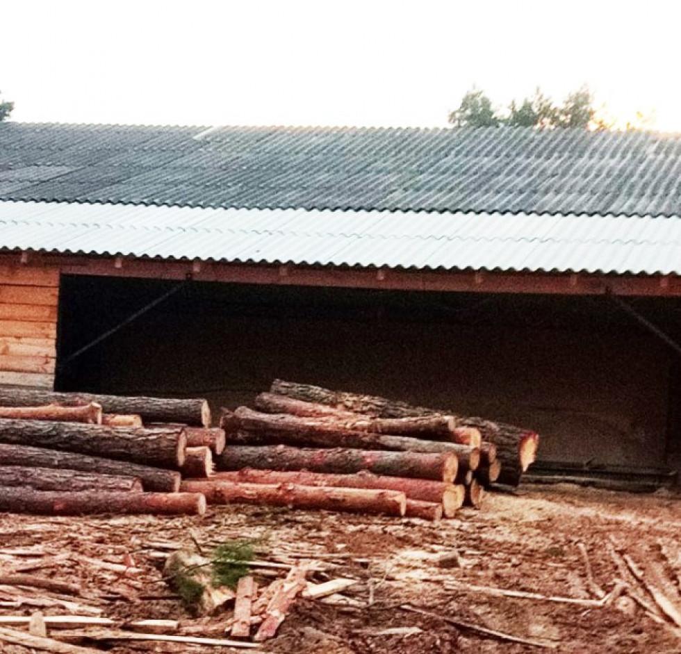 У Маневицькому районі знайшли викрадену деревину на 200 тисяч гривень
