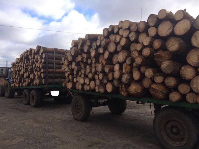 Затриманий транспорт із деревиною