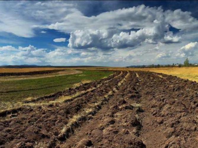 На Рівненщині інвентаризують сільськогосподарські землі