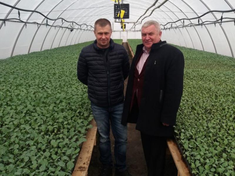 На Маневиччині підприємство десять років успішно займається агровиробництвом