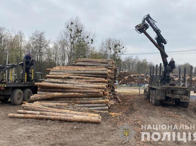 На Ковельщині дереобробне підприємство займалося махінаціями для вивозу деревини до ЄС