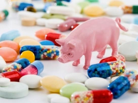 Українські виробники додають у продукти небезпечні добавки, - експерт