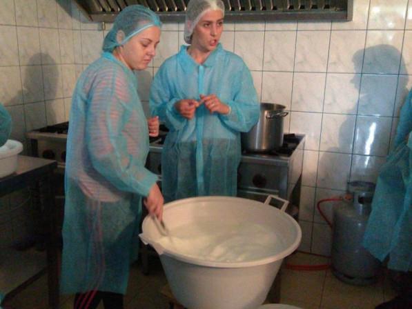 Волинські фермери навчалися сироварінню у Польщі