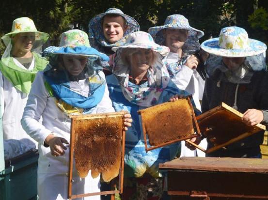Студенти з бджолиними сотами