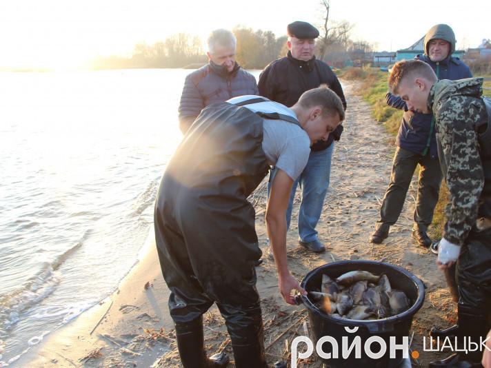 В озера Шацька випустили майже тонну коропа