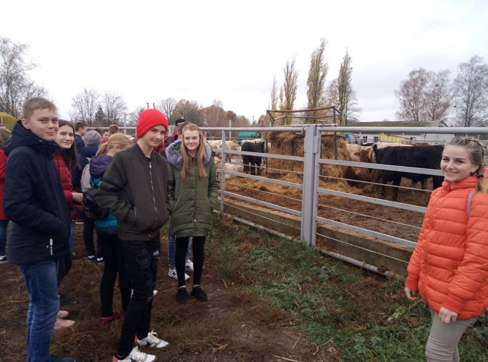 Школярі на фермі