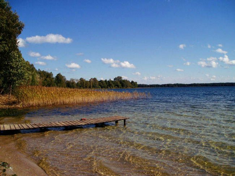 Фахівці розповіли, чому міліє озеро Світязь