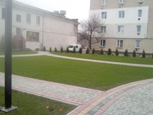 На озеленення скверу у Рожищі витратять понад 60 тисяч гривень
