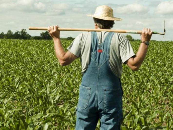 Ковельським фермерам розповіли про отримання бюджетної субсидії / Фото ілюстративне
