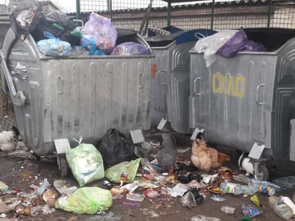 У громаді біля Луцька – сміттєва проблема