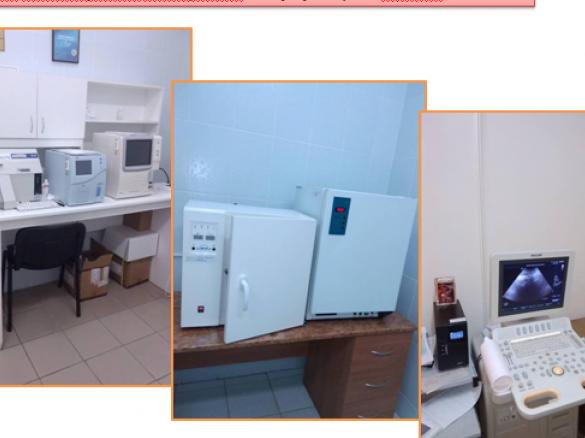 На розвиток сільської медицини у 2018 році Шаччина отримала 648 тисяч гривень