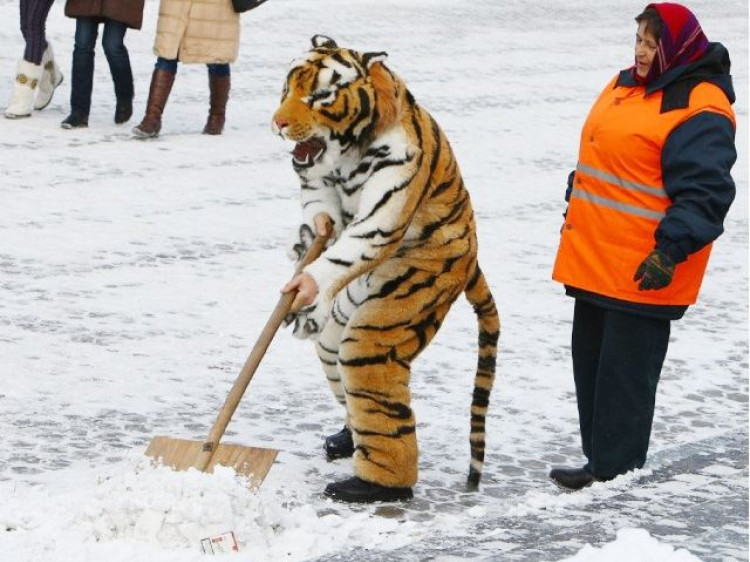 У Ковелі на боротьбу зі снігом витратили третину мільйона гривень