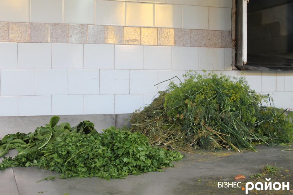 Духмяні трави для закруток