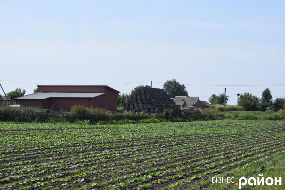 Хорохоринські городи